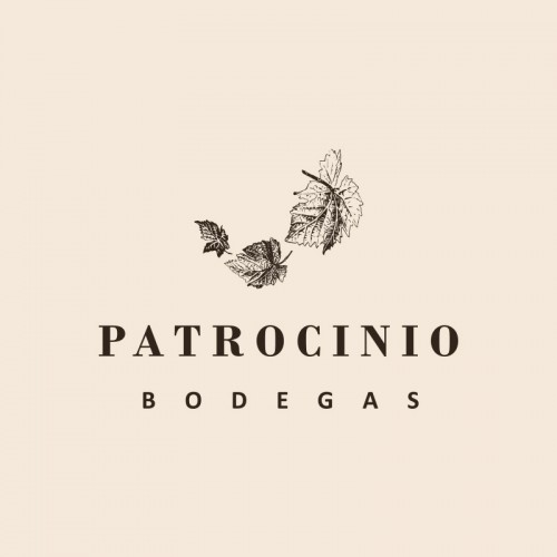 LOGOPATROCINIO_800X800